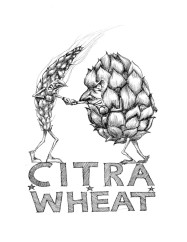 citra-wheat-small-791x1024